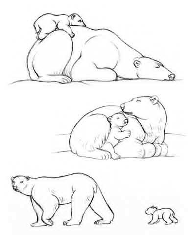 dibujo de una madre oso polar y su cachorro